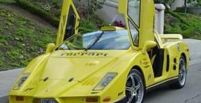 Fausse Ferrari Enzo de Jacky - 1